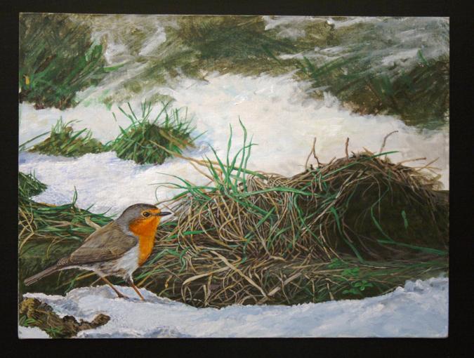 Alessandro sacchetti wildlife painter alcune delle for 30x40 planimetrie della casa