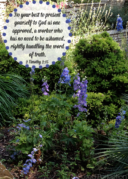 Food for the Soul ~ Green garden with purple flowers - 2 Timothy 2:15