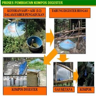 Skripsi Makalah Biomassa
