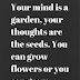 Your mind is a garden, your thoughts are the seeds.