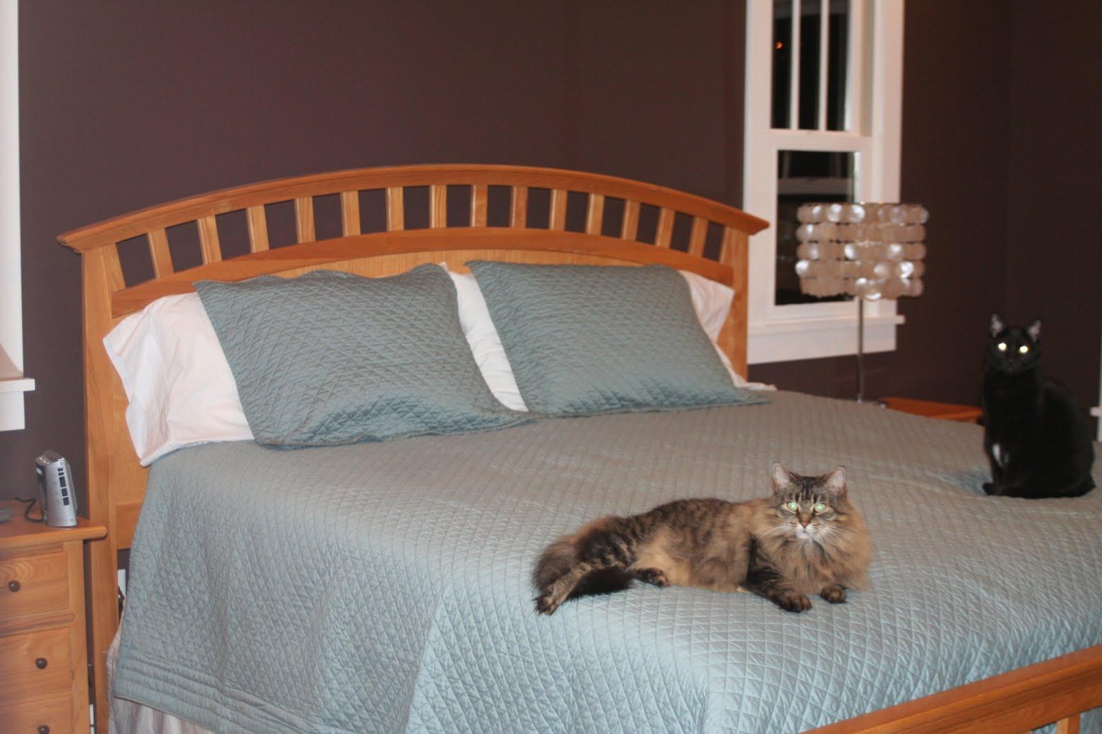 Stuck On Hue Bedroom Update Replacing The Furniture Suite