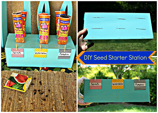 Seed Starter Station using recycled ProBug Tubes! #LifewayProBugs #pmedia