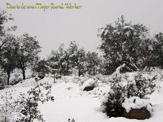 Nieve en el Guadiato