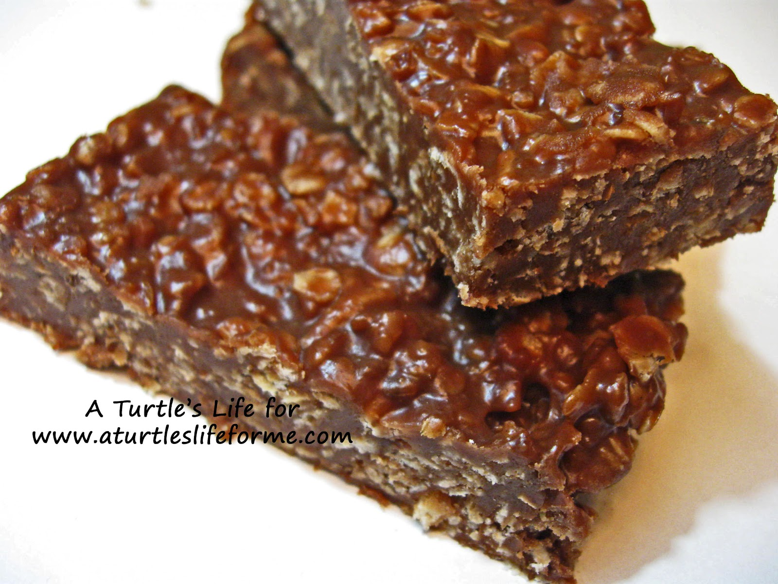Chocolate Granola Bars - A Turtle's Life for Me