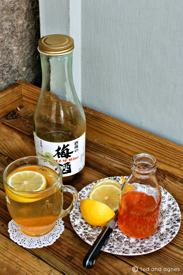 tales of ted and agnes: ROSEHIP & PLUM WINE HOT TODDY