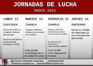 JORNADAS LUCHA MARZO 2013