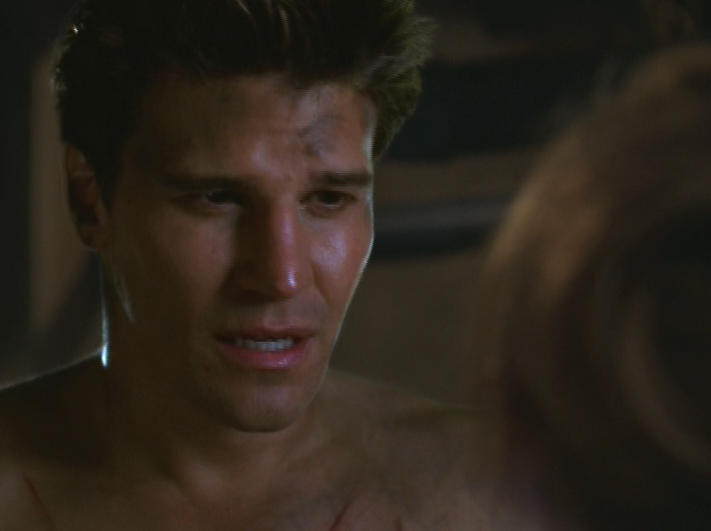 David boreanaz as angel on buffy the vampire slayer beauty and the