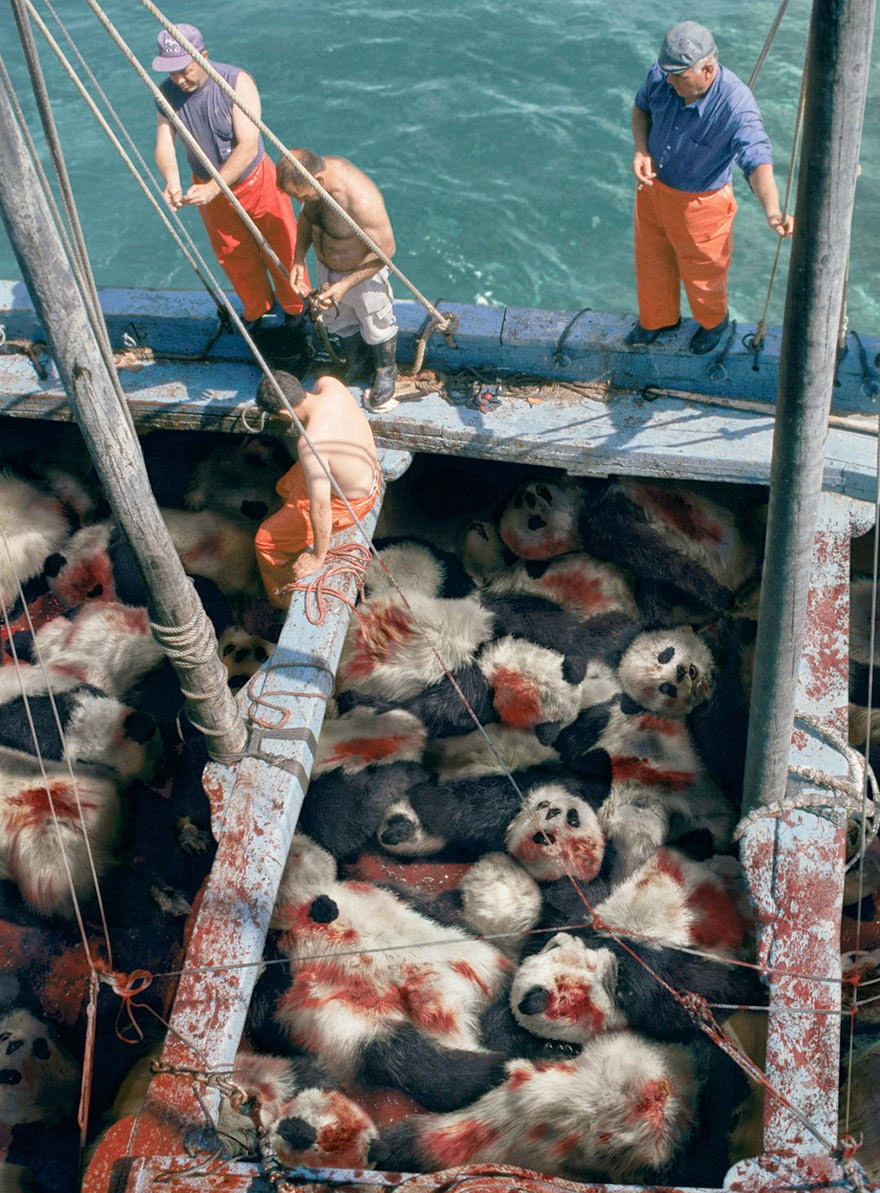 When You See A Tuna, Think Panda - 33 Powerful Animal Ad Campaigns That Tell The Uncomfortable Truth