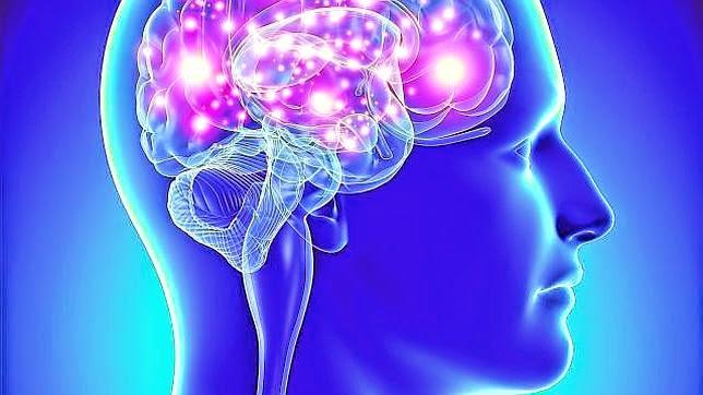 ¿Sabes lo que pasa en tu cerebro cuando te enojas?