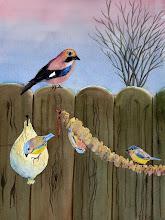 Diverse tuinvogels
