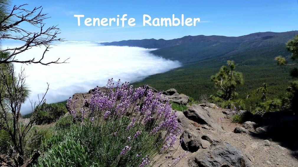 Tenerife Rambler