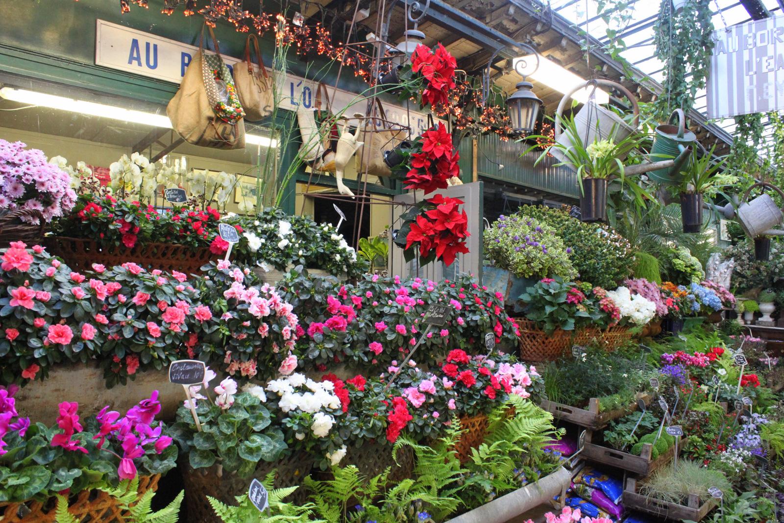 Ile de la Cité - Marché aux fleurs - Paris