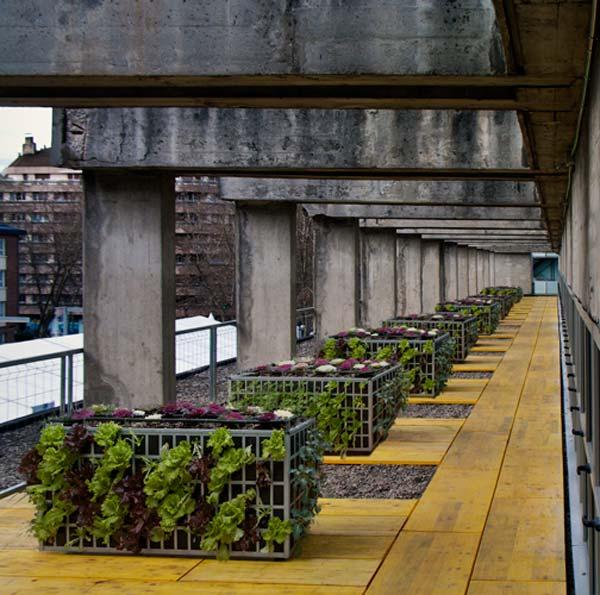 Air Garden jardineras verticales eco-huerto