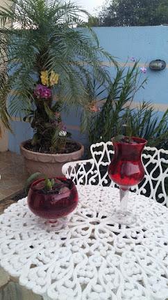 Plantar orquídeas em taças.
