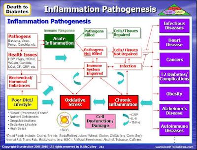 Inflammation Pathogenesis