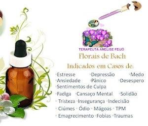 Terapia floral com consultas ONLINE.