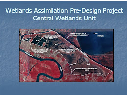 Wetlands Project
