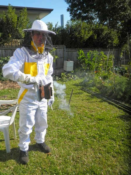 Beekeeping - How we started