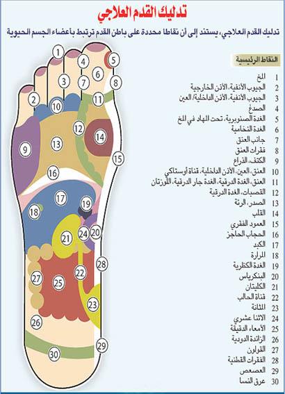 كتاب علم الامراض بالعربي pdf