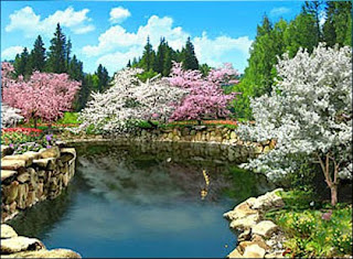Refreshing-Nature-Wallpapers