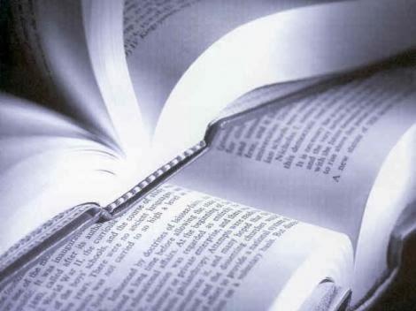 baixar apostila direito constitucional pdf concurso