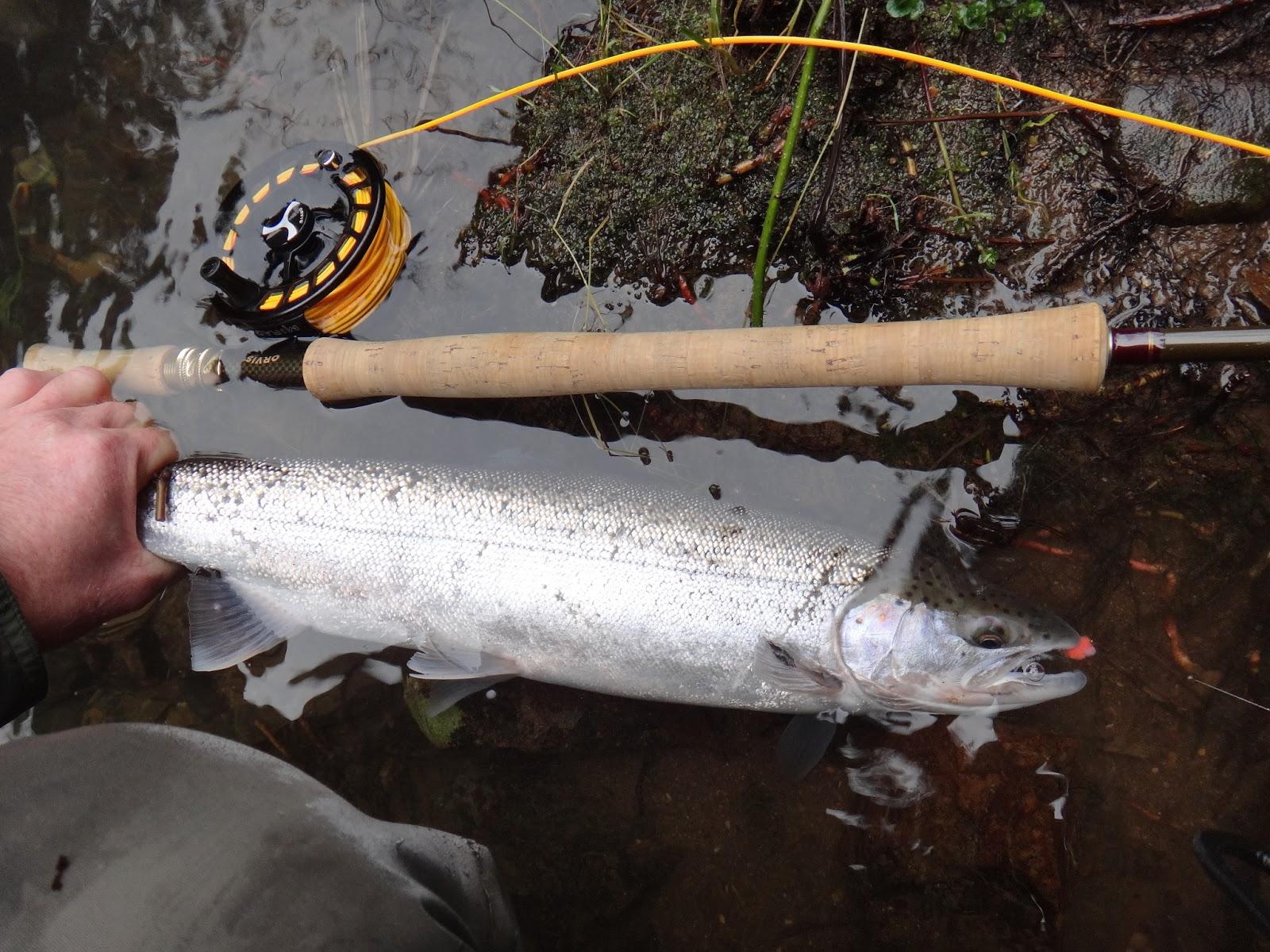 Brian Marz's Fly Fishing Oregon Blog