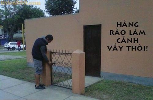 Hình ảnh hài hước vui nhộn nhất 2013, hinh hai huoc