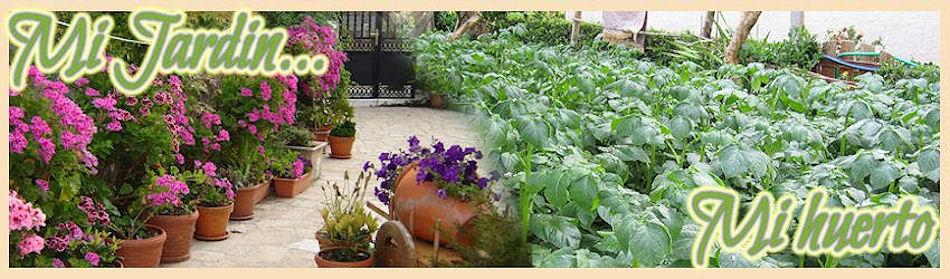 Mi Jardin ...y mi Huerto
