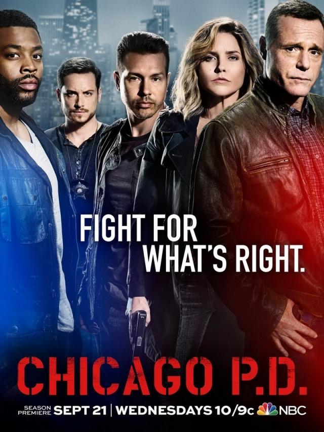 Cảnh Sát Chicago Phần 4