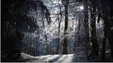 Sfondo-invernale-desktop-15