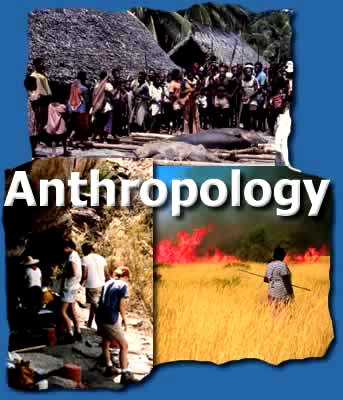Anthropology different majors