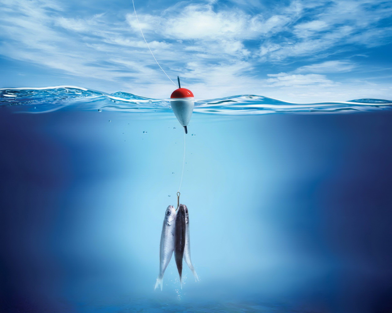 Cool underwater wallpapers for Cool fishing wallpapers