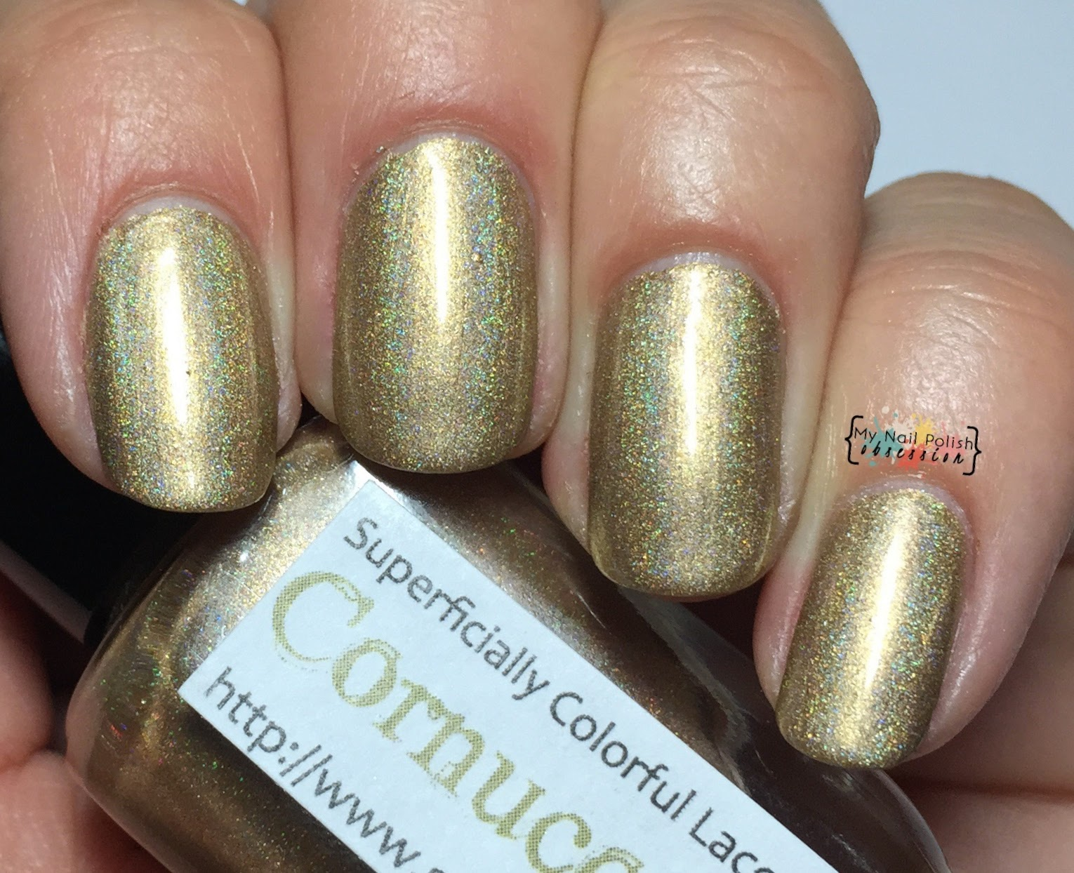 Superficially Colorful Lacquer Cornucopia