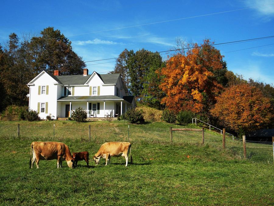 Sweet carolina life found the one for Farm house pics