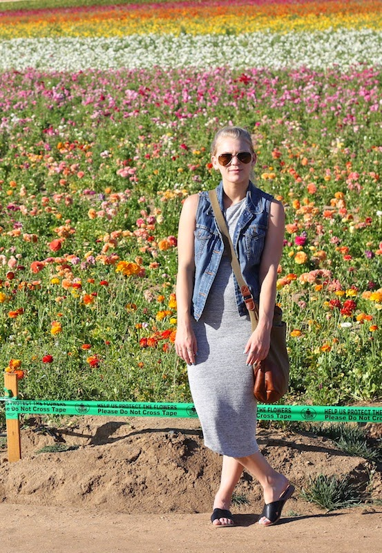 Current Habits Flower Fields