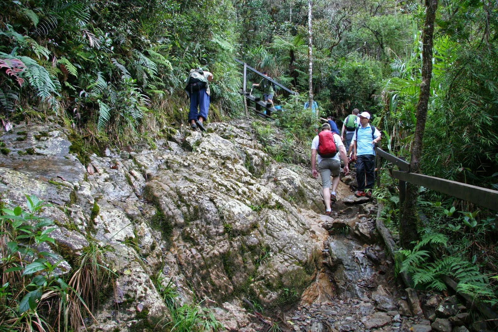 Summit Trail, Mt Kinabalu.