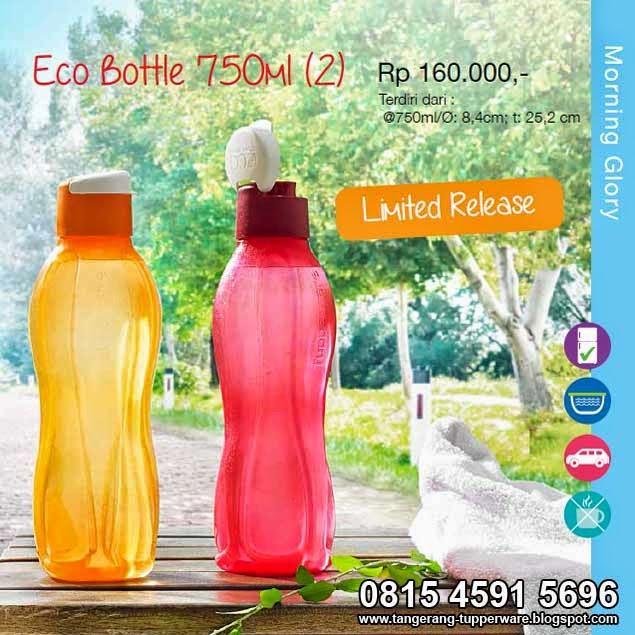 Eco Bottle 750mL