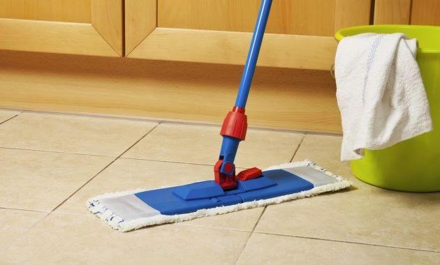 Elimina los parásitos de tu hogar