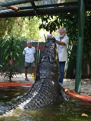 The worlds biggest crocodile Hes 18ft long weighs a