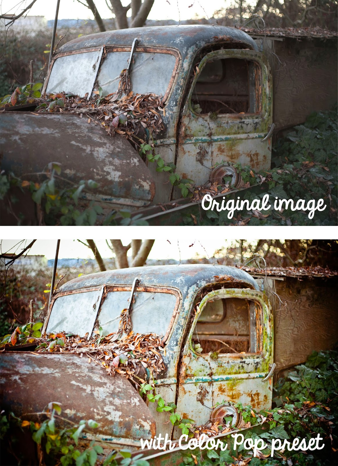 free lightroom preset color pop