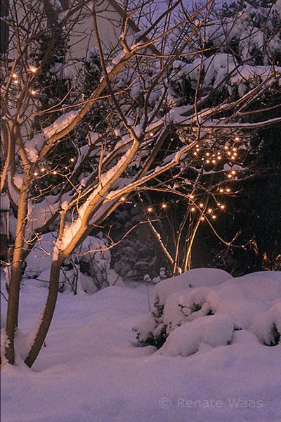 Gartenbeleuchtung verzaubert den verschneiten Garten am Abend