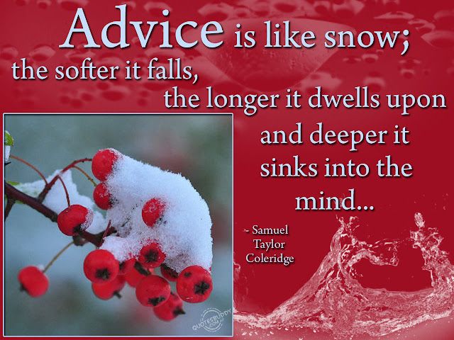 softer snowfall quote and wish