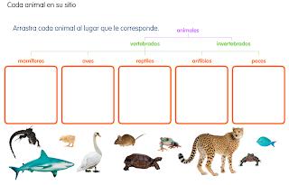 http://primerodecarlos.com/SEGUNDO_PRIMARIA/diciembre/Unidad5/actividades/cono/animales2.swf
