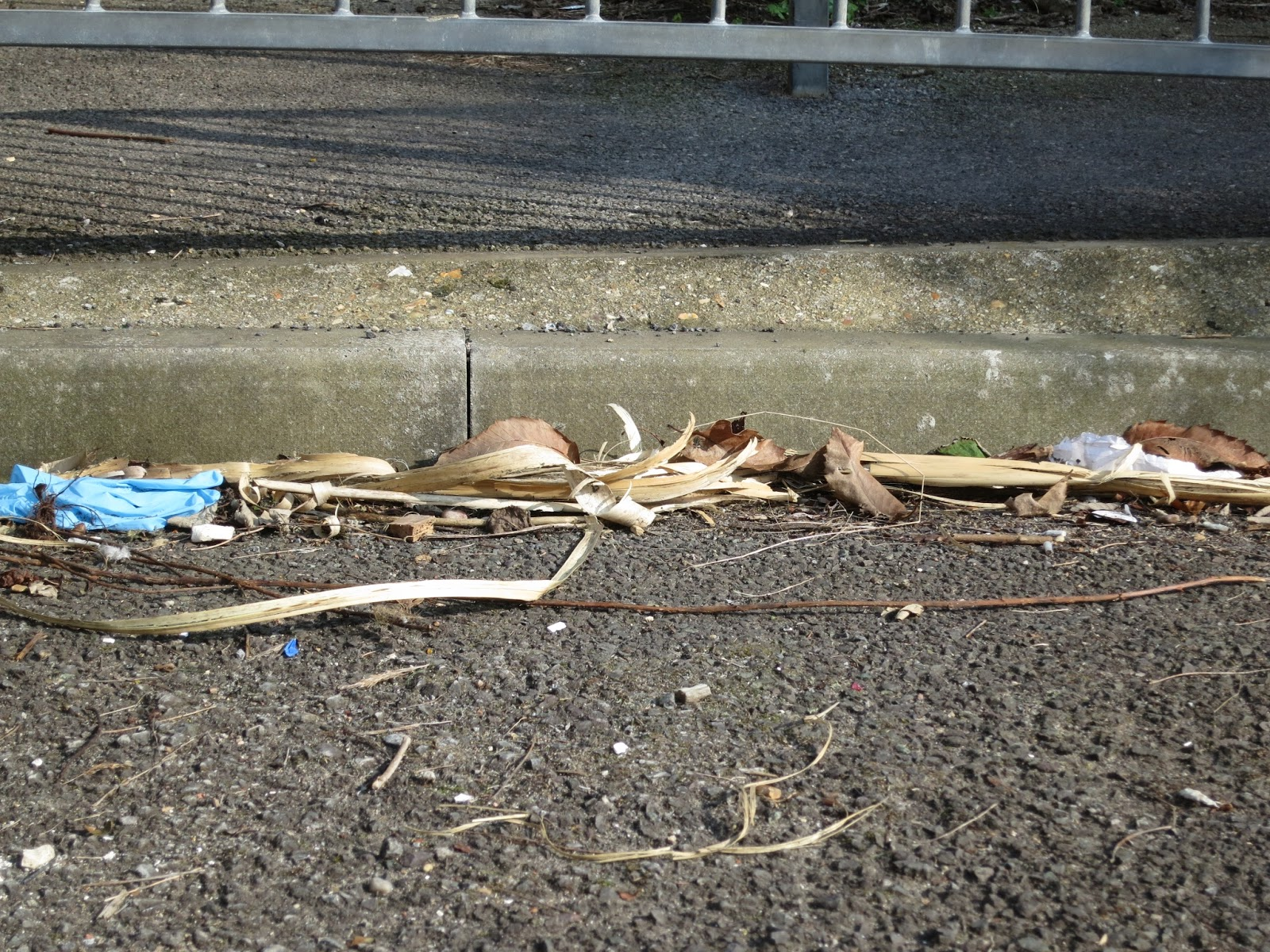 Leaves and other debris in kerb by railings with shadow