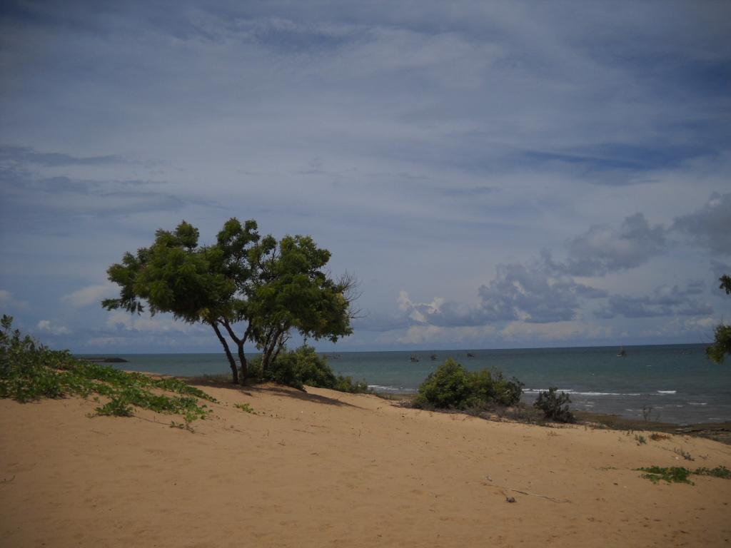 Pulau Sapudi