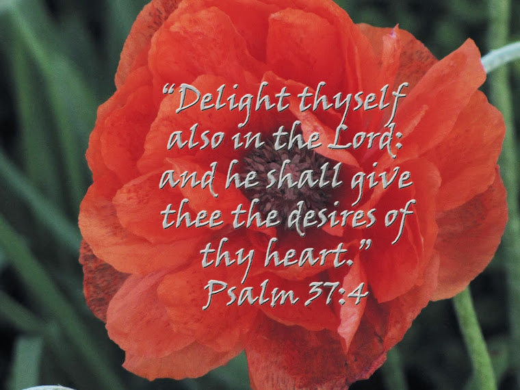 Red Poppy - Psalm 37:4