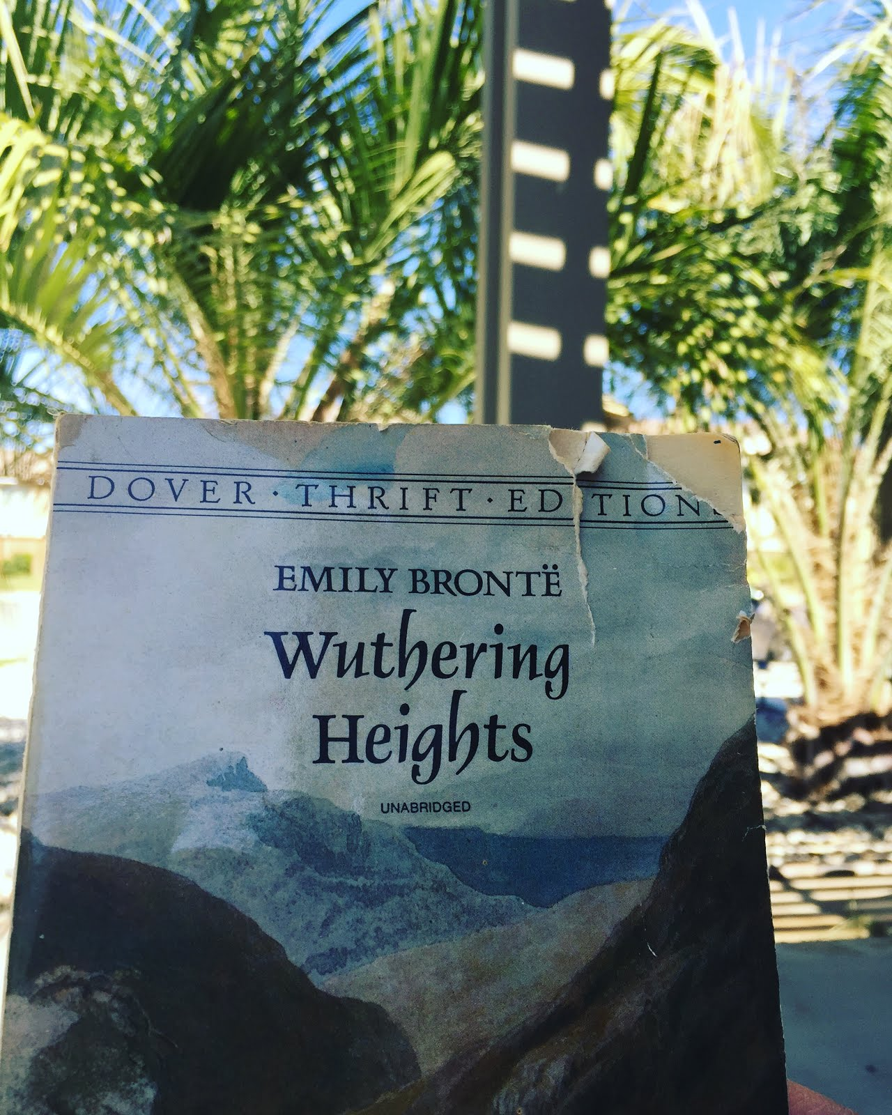 an analysis of wuthering heights by Analysis of major characters heathcliff - an orphan brought to live at wuthering heights by mr earnshaw, heathcliff falls into an intense, unbreakable love with mr earnshaw's daughter.
