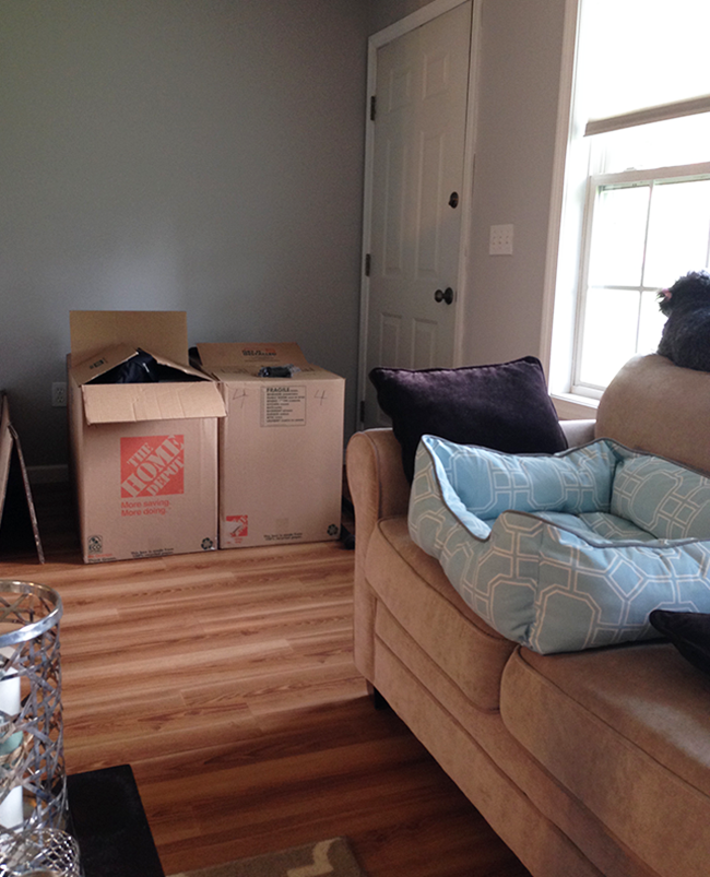 packing for a move