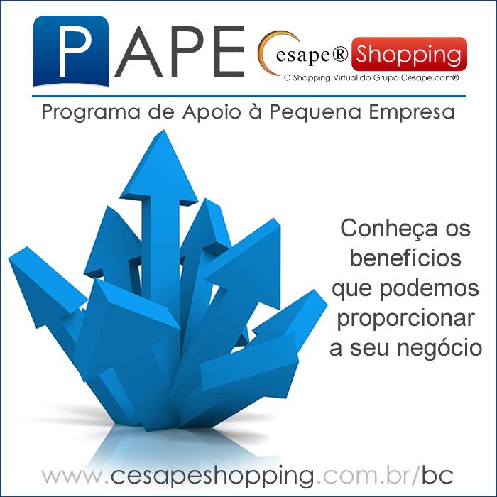 PROGRAMA DE APOIO À PEQUENA EMPRESA