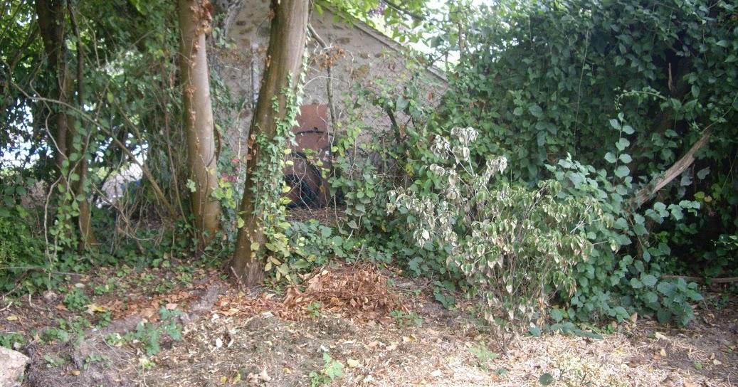 Derri re les murs de mon jardin projet d automne massif vert rose blanc - Derriere les murs de mon jardin ...